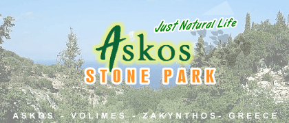 Activities in Zakynthos